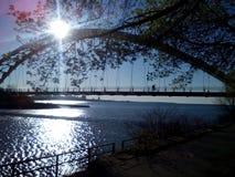 多伦多江边自行车足迹#3 库存图片