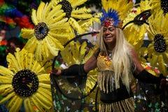 多伦多的第33每年骄傲游行 库存图片