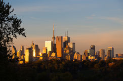 多伦多街市在日出 免版税图库摄影