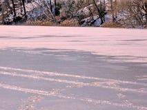 多伦多高公园结冰的池塘2017年2月 免版税图库摄影