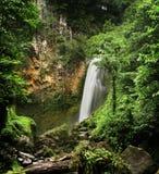 维多利亚瀑布(多米尼加) 图库摄影