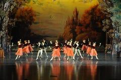 多士歌曲芭蕾天鹅湖 库存图片
