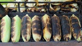多士玉米 库存图片