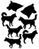 多壳的狗黑色传染媒介剪影集合 免版税库存照片