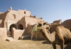 多孔黏土结构传统伊朗的绿洲 免版税库存图片