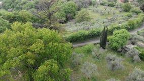 多小山与橡木、柏和橄榄树的植被鸟瞰图 股票录像