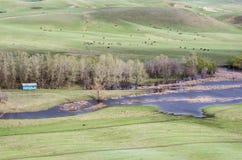 多小山干草原在春天 免版税库存图片