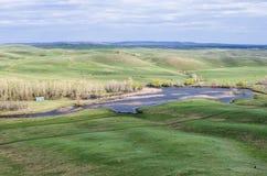 多小山干草原在春天 库存图片
