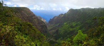 多山的夏威夷 免版税库存图片