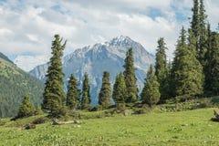 多山风景和风景在Atlyn Arashan远足到Alakol湖,一次普遍的旅游旅行在卡拉科尔,吉尔吉斯斯坦附近 图库摄影