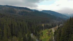 多山风景的壮观的自然美人与具球果森林,快速流动的河,积雪覆盖的峰顶的 股票录像