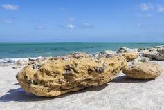 多岩石的海滩摘要 免版税库存照片