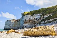 多岩石的海滩摘要 图库摄影