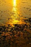 多岩石的海滩日落 免版税库存图片