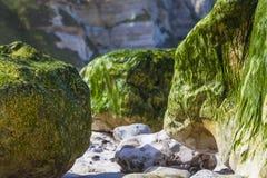 多岩石的海滩-抽象细节 库存照片