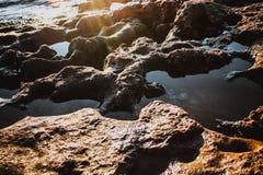 多岩石的海滩13 免版税库存图片