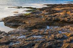 多岩石的海滩10 库存图片