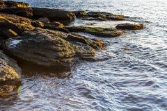 多岩石的海滩11 库存照片