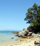 多岩石的海滩和树 库存照片