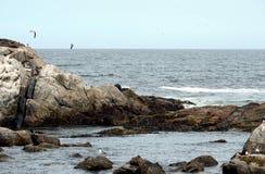 多岩石的海滩在比尼亚德尔马 库存图片