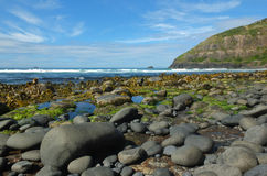 多岩石的海滩 免版税库存图片