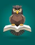 多形状的猫头鹰低,传染媒介 库存图片