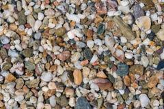 多彩多姿的五颜六色的海小卵石,自然本底,纹理 免版税库存照片