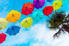 多彩多姿的伞和一棵绿色棕榈树反对蓝天 库存图片