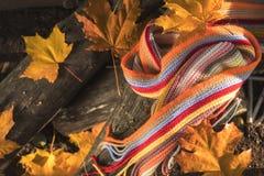 多彩多姿的围巾和黄色槭树和橡木叶子在日志 库存图片