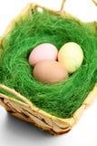 多彩多姿的复活节彩蛋在wattled篮子 免版税库存照片