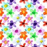 多彩多姿的无缝的花卉样式 库存例证