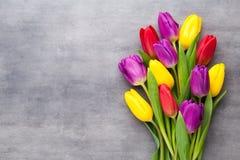 多彩多姿的春天开花,在灰色背景的郁金香 免版税库存图片