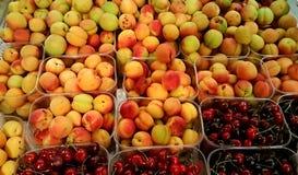 多彩多姿的杏子和樱桃 免版税库存图片