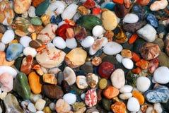 多彩多姿的海小卵石在水中 免版税库存照片