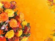 多彩多姿的玫瑰框架  免版税库存照片