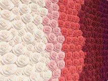 多彩多姿的玫瑰 库存图片