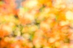 多彩多姿的秋天bokeh背景 库存图片