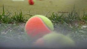 多彩多姿的网球在网球场,背景,慢动作的草在 股票视频