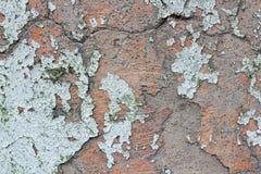多彩多姿的老油漆的破布条一个石墙的表面上的 免版税库存图片