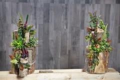 多彩多姿的花、叶子和莓果的植物布置我 免版税库存照片