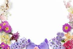 多彩多姿的花,绿色叶子,在白色背景的分支框架  平的位置,顶视图 蝴蝶下落花卉花重点模式黄色 模式 免版税图库摄影