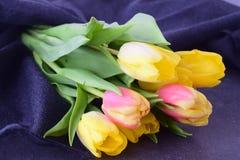 多彩多姿的郁金香花束在一块灰色布料的 下雨 言情 库存图片