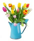 多彩多姿的郁金香花花束在蓝色的 库存照片
