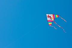 多彩多姿的风筝 库存照片