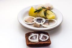 多数喜爱和普遍的俄国食物是煮的土豆用鲱鱼和葱和德国泡菜和菜油 免版税图库摄影