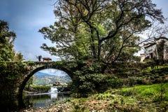 多数美丽的国家婺源 库存照片