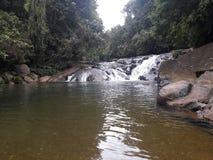 多数美丽的瀑布在斯里兰卡 库存照片