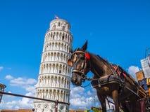 多数著名旅游胜地在比萨-斜塔-比萨意大利- 2017年9月13日 图库摄影