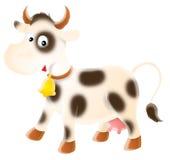 多斑点的母牛 库存图片