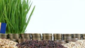 巴巴多斯沙文主义情绪与堆金钱硬币和堆麦子 股票视频